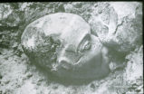 Neolithic sculptured plastered skulls