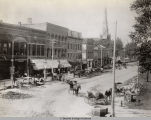 WEST COLLEGE STREET IN OBERLIN, OHIO IN 1893